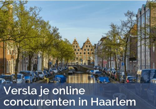 SEO Experts van Bratpack in Haarlem