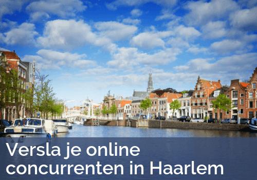 SEO in Haarlem door Bratpack
