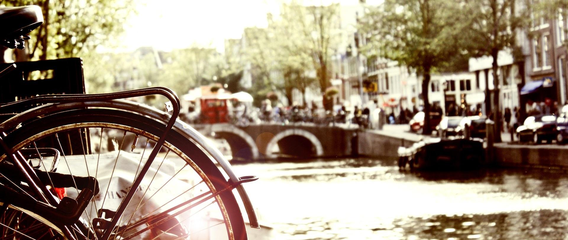SEO Amsterdam door Bratpack